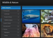 xenforo-expanded-category-list-accordion-menus-media-gallery.jpg